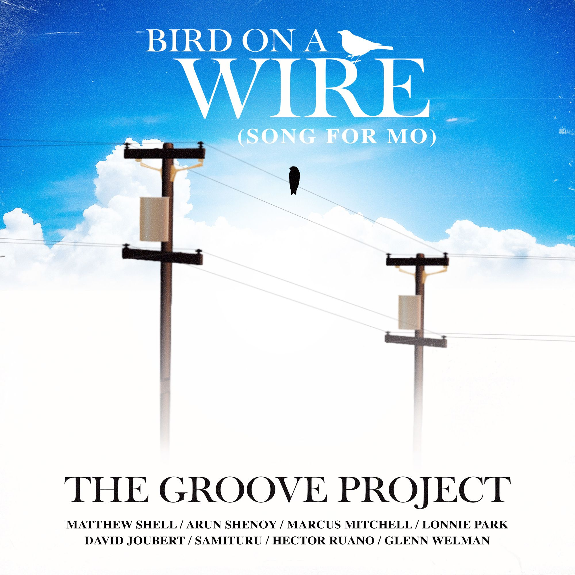 11. Bird on a Wire (Song for Mo)