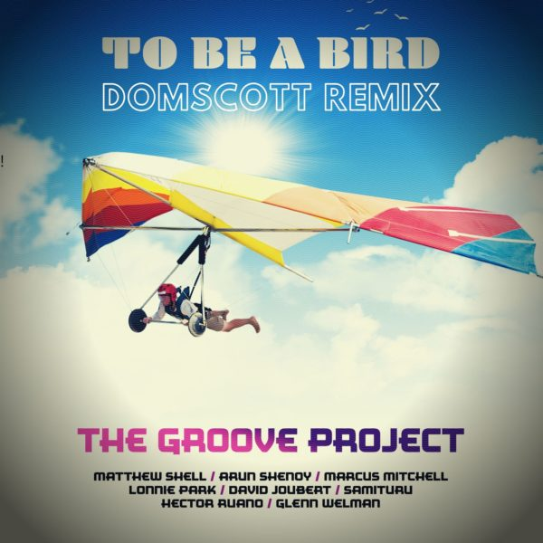 Domscott To Be a Bird Remix-cover